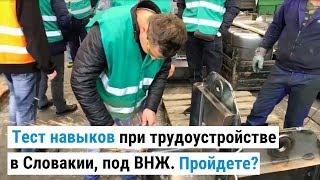 Тест навыков при трудоустройстве украинцев в Словакии под прямой контракт с ВНЖ. Пройдете?