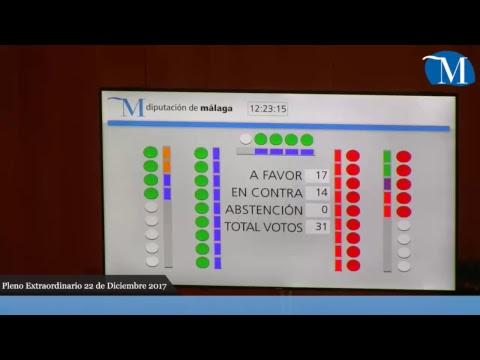 Pleno extraordinario diciembre, Diputación de Málaga