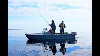 Протока рыбалка форум