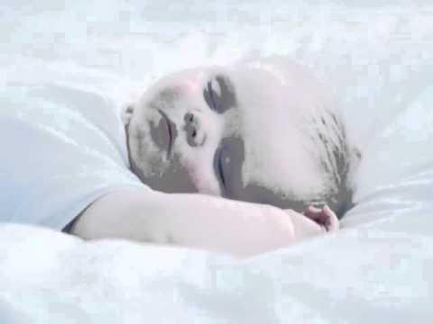 أعجوبة النوم – علي القرني