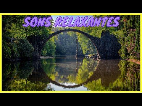 Msica para dormir - Meditao - Pssaros - Relaxar - Musica Relajante - Meditation sound - sv133