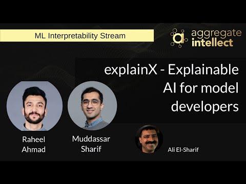 explainX - Explainable AI for model developers