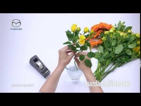 #49 Sistemare un vaso di fiori