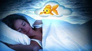 К чему сниться рыбалка во сне