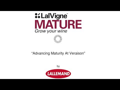LalVigne Mature : advancing grapes maturity at ver