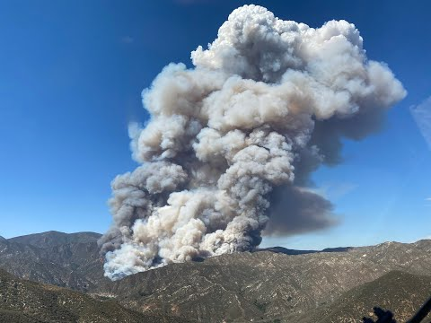 Live: Lake Hughes Fire Burns 50 Acres | NBCLA