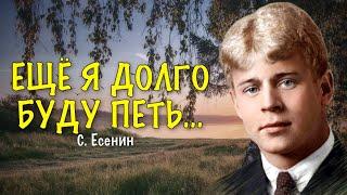 """АНАЛИЗ СТИХОТВОРЕНИЯ! """"ПУШКИНУ"""" Сергей Есенин"""