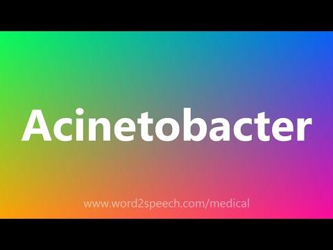 Salice erbe nel trattamento di adenoma prostatico
