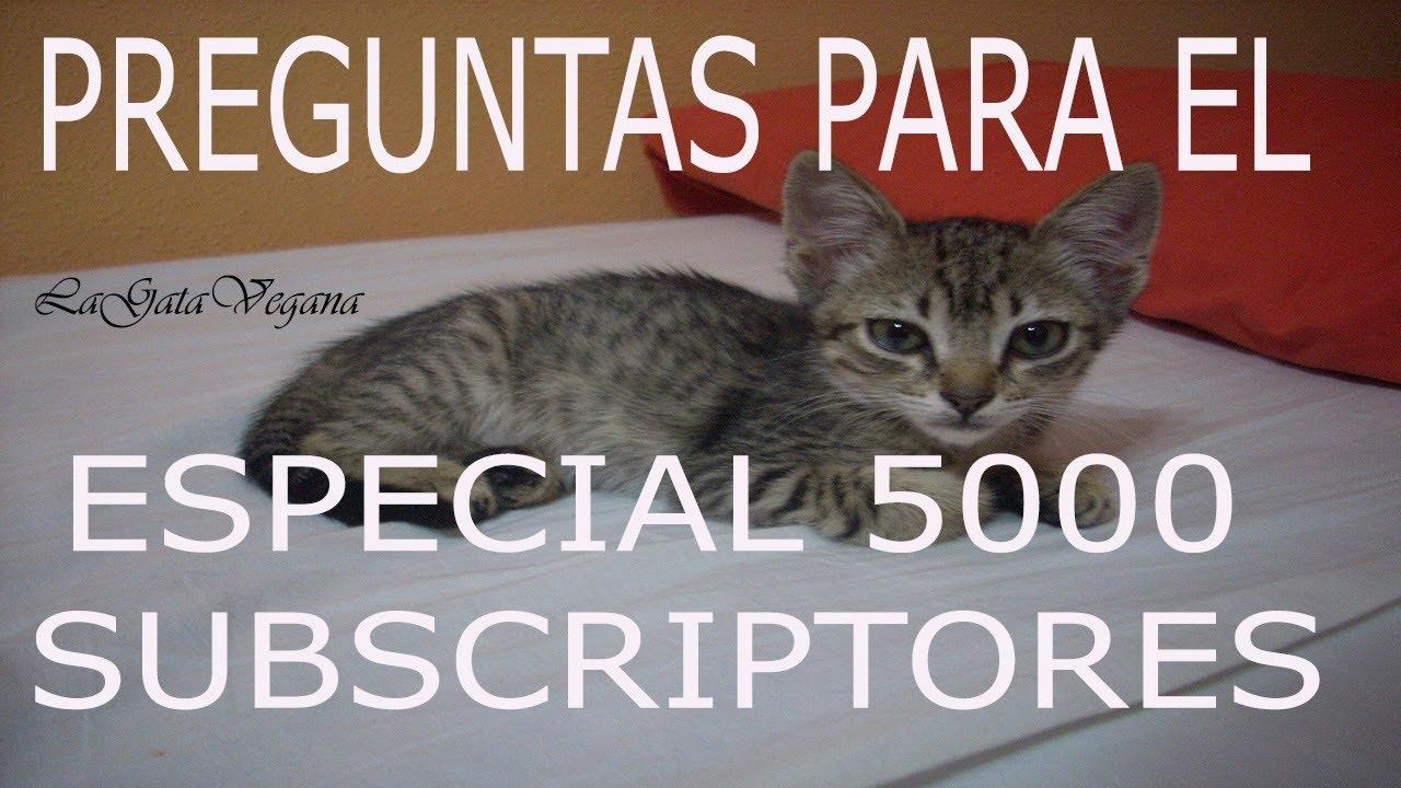 PREPARANDO EL ESPECIAL 5000 SUBS /PREGUNTADME COSAS PARA QUE OS RESPONDA EN EL VÍDEO