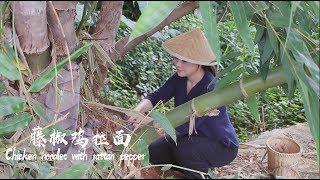 砍一棵春笋,给家人做一碗鲜香麻辣的藤椒鸡拉面【滇西小哥】