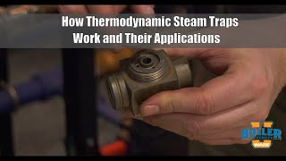 Steam Traps | Thermodynamic Trap Functions and Uses