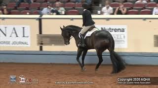 2020 AQHA Youth 14 18 Hunt Seat Equitation
