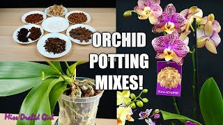 What is the best Potting Mix for your Orchid? - Learn about Orchid Mixes! Orchid Care for Beginners