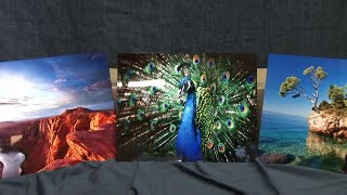 How to print to photo metal panels with the Epson SureColor F6200 printer
