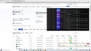 Wie man Litecoin auf Laptop 2021 meinte