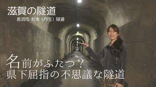 【滋賀の隧道】杉本(丹生)隧道