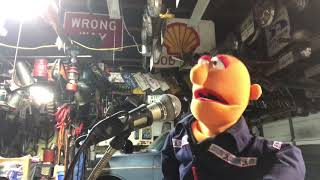 """Muppet whatnot attempt at Angry Johnnys song """"Poor little racoon"""""""