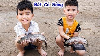 Bắt Cá Bất Ngờ - Bé vui Cắm Trại ♥ Min Min TV Minh Khoa