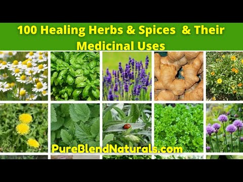Top 100 Best Healing Medicinal Herbs, Spices And Plants Names, Health Benefits And Medicinal Uses