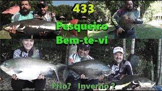 Pescaria e Alegria no Pesqueiro Bem-te-vi - Fishingtur na TV 433