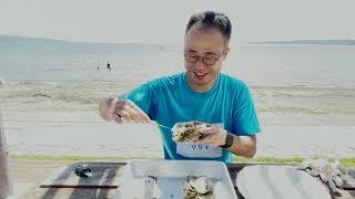 クラウドファンディングプロジェクト:【今が旬】瀬戸内の素潜り漁師が獲った幻の赤ウニ、特大天然岩ガキを「食べて応援」!