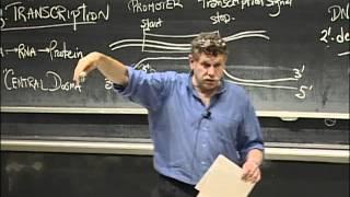 Transcription and Translation, excerpt 1 | MIT 7.01SC Fundamentals of Biology