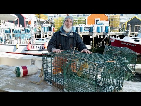 Youtube Video Still for Harvesting American Lobster - How a Lobster Trap Works