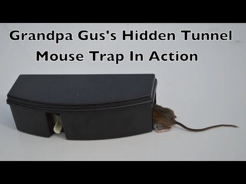 Grandpa Gus's HiddenTunnel Mouse Trap In Action Full Review.