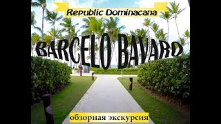 Доминикана, Barcelo Bavaro (Барсело Баваро) Пляж Доминиканы, Розывый Фламинго в Барсело Баваро Пэлас