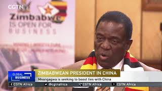 INTERVIEW: One-on-one with Zimbabwe