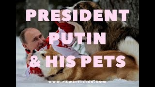 Russian President Putin and his Pets