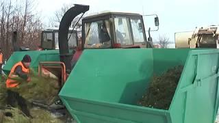 В Харькове работают три стационарных пункта по дроблению елок