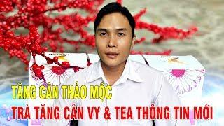 TĂNG CÂN THẢO MỘC TRÀ TĂNG CÂN VY TEA THÔNG TIN MỚI