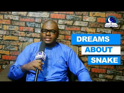 DREAMS ABOUT SNAKE - Find Out The Biblical Dream Meanings