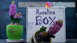 Розыгрыш в моем ИНСТАГРАМЕ @rusalina_cernit ❤ RusalinaBox ❤ Розыгрыш творческой коробочки