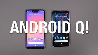 Android Q Beta First Look!