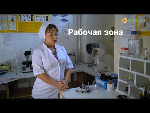 Экспертиза продуктов питания на ЭкоБазаре