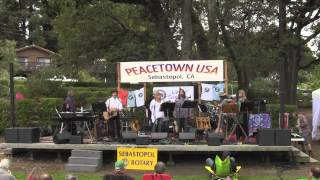 St Annes's Gold / Peacetown Summer Concert Series