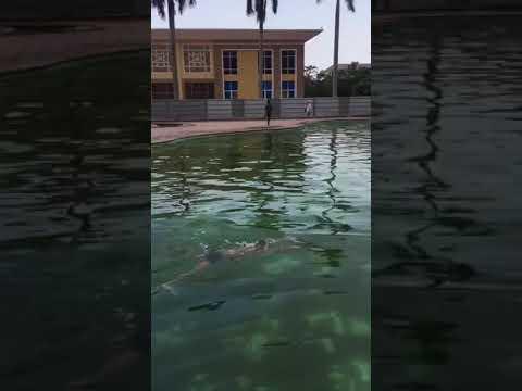 Đức Khoa_Giải nhất bơi ếch nam_Năm học 20-21