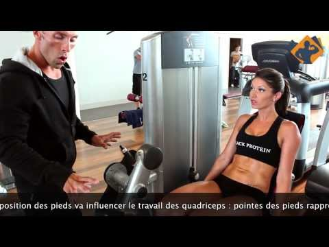 Le muscle couturier lexercice
