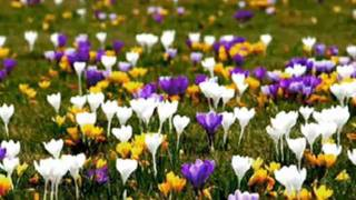 James Last- Spring Song