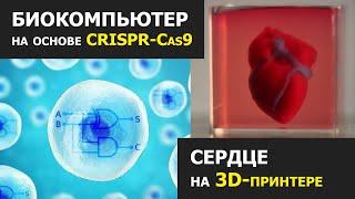 Двухъядерный БИОкомпьютер и 3D печать сердца. Главное на QWERTY №81