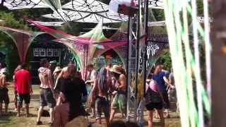 Psycrowdelica 2013 Fractal Cowboys