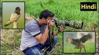 Best Lenses for Wildlife Photography   Wildlife Photography in India   Hindi  