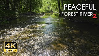 4K HDR Peaceful Forest River 2 - Relaxing Water Stream Sounds - 9 Hours - Nature Video for Sleeping