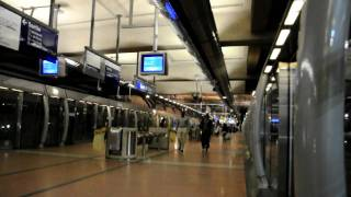 preview picture of video 'Métro de Paris - Ligne 14 automatique à la Gare de Lyon (Nikon D90)'