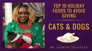 Top 10 Holiday Foods To Avoid Feeding Your Pet