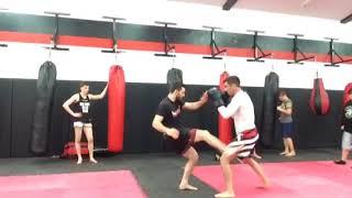 MMA low kick combo