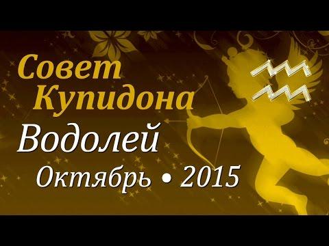 Водолей петух гороскоп на 2017