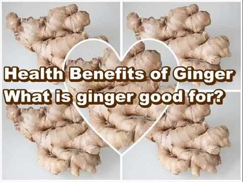 Video Health Benefits of Ginger ,What is ginger good for?